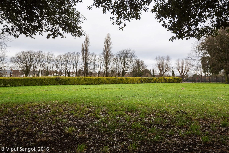 FOAP Orchard Planting©Vipul Sangoi_3897